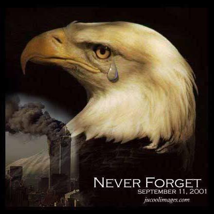 9-11 Eagle Tear