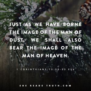 image of man of heaven_corinthians-bible-quotes